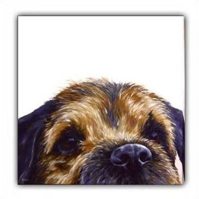 Border (Canvas) - Border Terrier by Paul Doyle, Price SOLD OUT