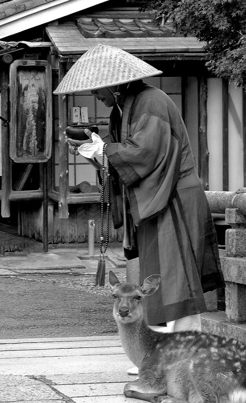 Ascetic monk in front of Todai-ji temple, with a famous wild Japanese deer in…