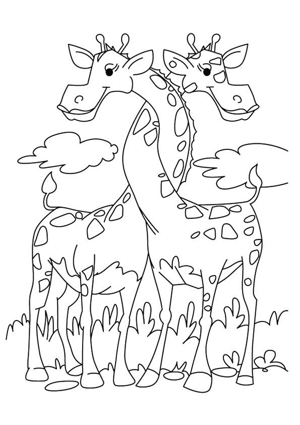 The-Two-Giraffes-Entwined | Giraffe coloring pages, Cute ...