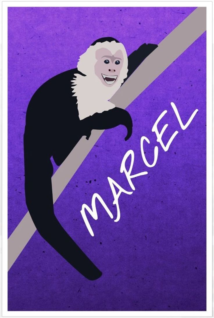 I miss Marcel when he's not in the episodes