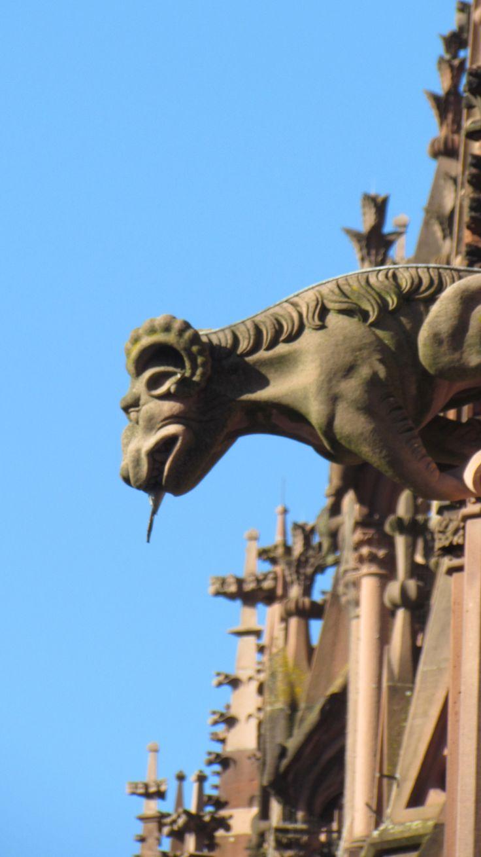 Freiberg #Germany ~ Gargoyles guarding the city ~ October 2013