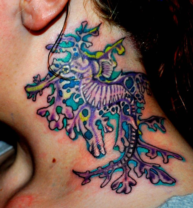 78 images about tattoo on pinterest the birds bird for Sea dragon tattoo