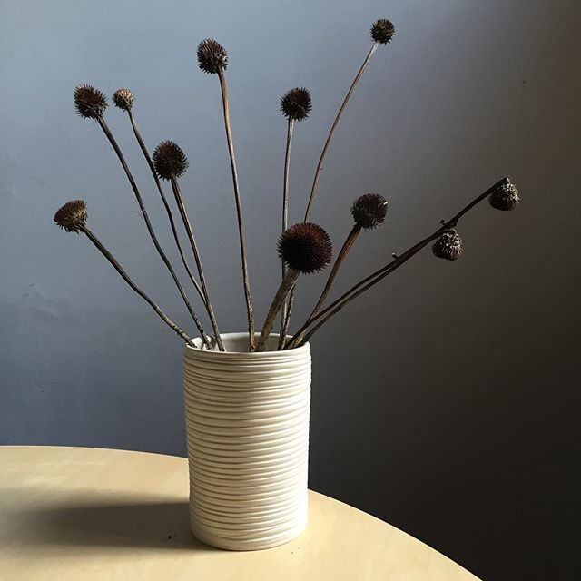 Vase with dried echinacea