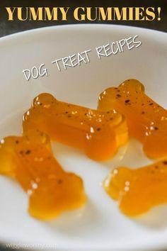 Gummy Dog Treat Recipe Dog Biscuit Recipes Soft Dog Treats