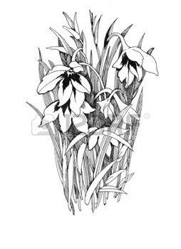 tatouage fleur: fleurs dessinées à la main sur fond blanc