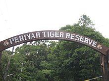 Panthera tigris - Wikipedia