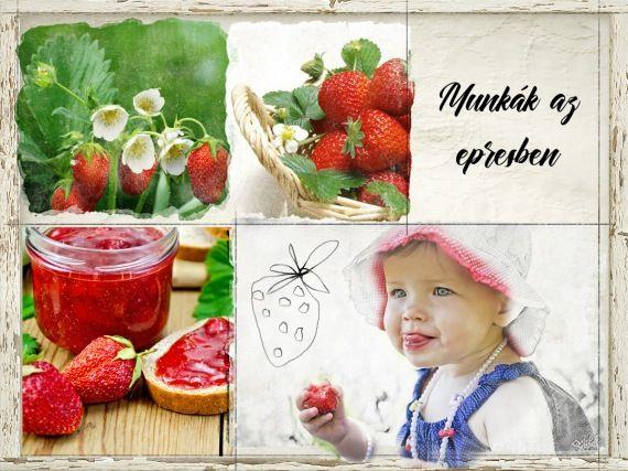 Munkák az eper körül márciusban - gazigazito.hu