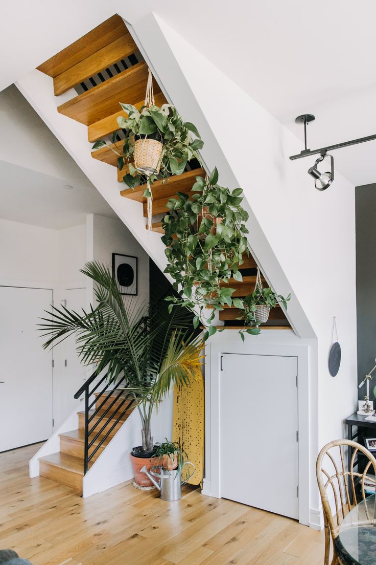 Plants and DIY Projects Make This Philly Rental Apartment Cool