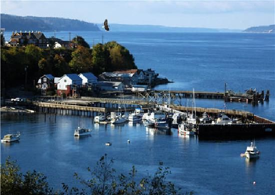 Whidbey Island  | Whidbey Island For Kids and Pets