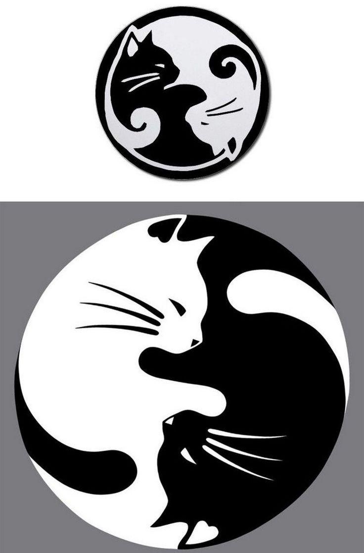 Les 25 meilleures id es de la cat gorie silhouette chat - Tatouage silhouette chat ...