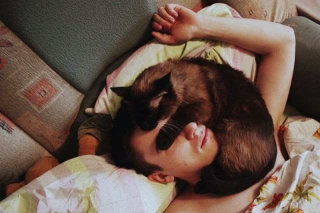 Pet Sitting: Γιατί η γάτα μου κοιμάται στο κεφάλι μου