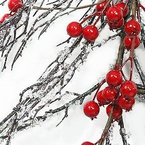 Diy Making Iced Branches Holiday Ideas Holiday Crafts Christmas Holidays Christmas