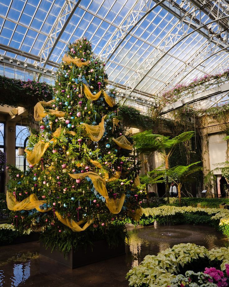 17 best images about christmas at longwood gardens on for Landscaping longwood