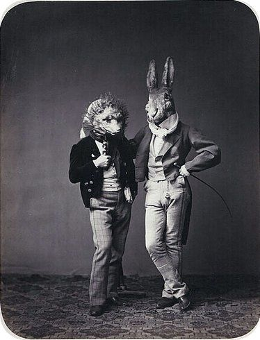Rabbit and Hedgehog