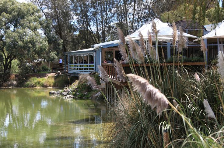 Maggie Beer's Farm Shop:  Showcasing the lovely range of Maggie Beer products.   Located in South Australia, it's a lovely drive to have a light lunch or afternoon tea in an idyllic country location.