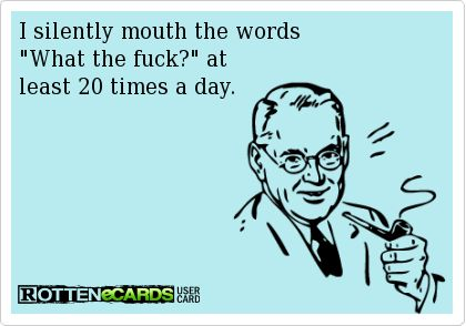 I silently mouth the words What the fuck? at  least 20 times a day.