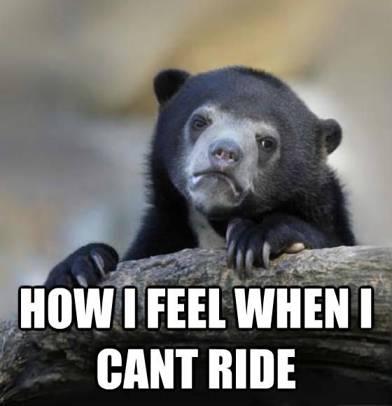 How I feel when I cant ride. cantwaitfortheweekend, motocross, dirtbikes, dirtbike, mx, riding, honda, suzuki, kawasaki, yamaha, meme, motorcycle, racing