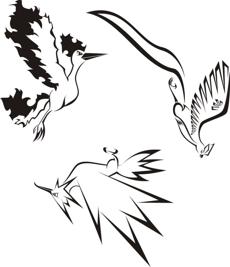 Pokemon Legendary Bird Trio Idea