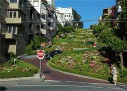 SF CROOKED STREET OF FLOWERS