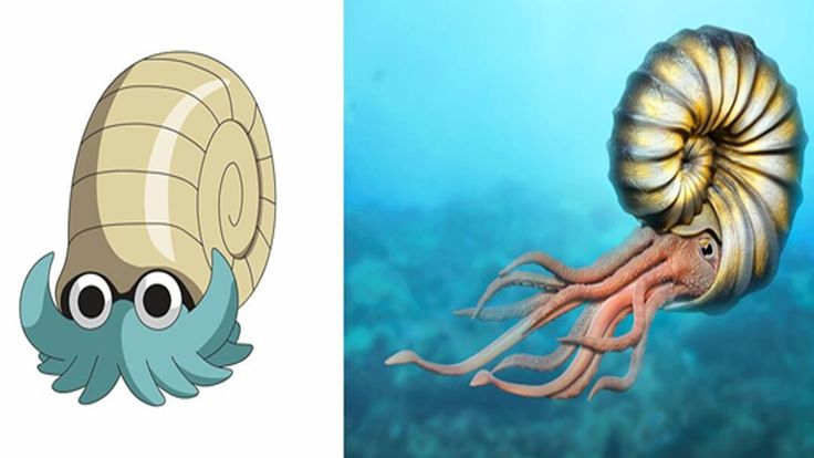 'Pokemon GO' Characters In Real Life