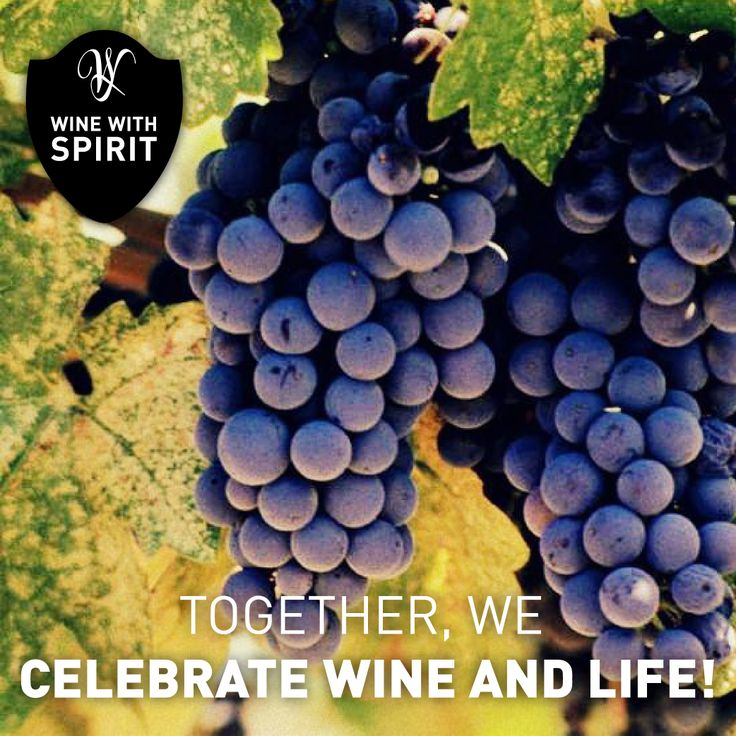 TOGETHER WE CELEBRATE WINE AND LIFE!  www.winewithspirit.net