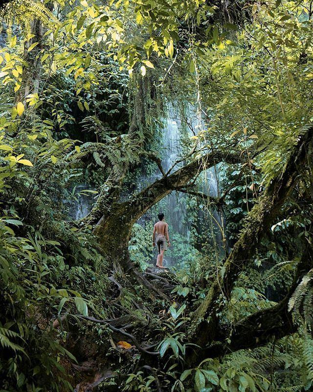 Harta karun!  Kalau di serial 'Keluarga Cemara' zaman dulu harta yang paling berharga itu adalah keluarga.  Nah kalau traveling harta yang paling berharganya apa yaa? Mungkin salah satunya menemukan tempat tersembunyi yang keren banget kayak fotonya @baratdaya_ yang diambil oleh @simaun_ di Air Terjun Benang Stokel & Benang Kelambu ini.  Air terjun ini terletak di kawasan Wisata Taman Nasional #GunungRinjani.  Untuk menuju lokasi kamu akan ditantang untuk trekking melewati hutan dan sawah…