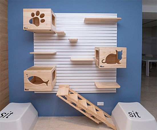 The original CatsWall modular cat climbing wall is the perfect way to create a flexible vertical space for cats. The CatsWall system uses aluminum slats that attach to any wall in combination with shelves, perches, boxes and ladders that easily attach to the slat wall, allowing the attachments to be removed for cleaning or reconfiguration. All of the…