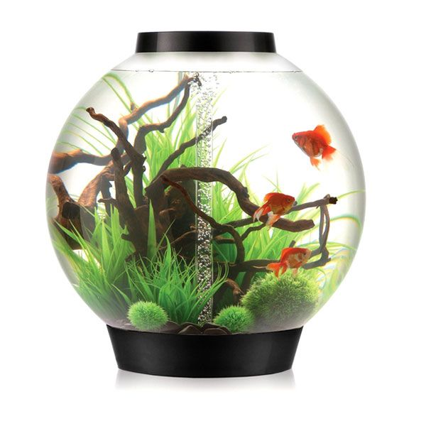 BiOrb Fish Tanks All Sale | Free UK Delivery | PetPlanet.co.uk