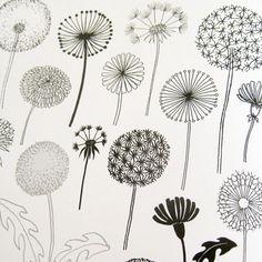 """print & pattern:""""20 Ways to Draw a Tree and 44 Other Nifty Things from Nature"""" by Eloise Renouf"""