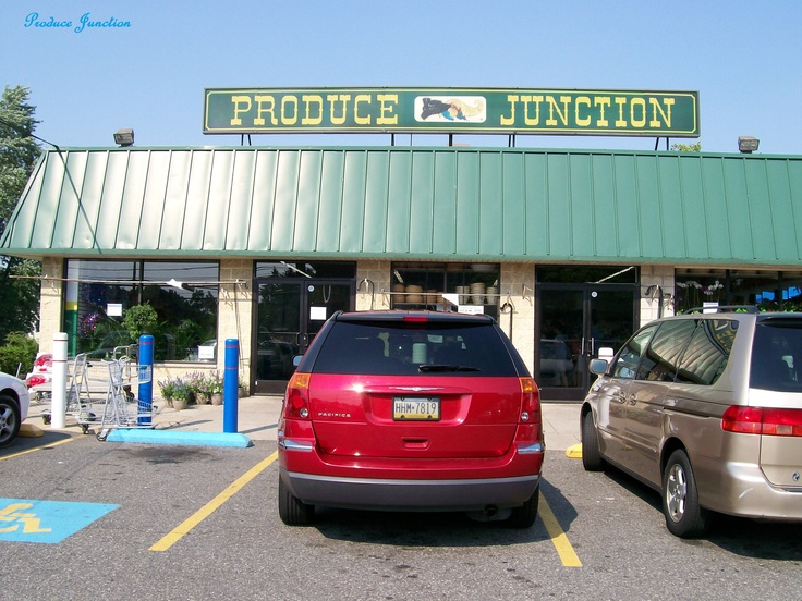 Produce Junction - where I go weekly for terrific bargains on cut flowers, plants fruits and vegetables!Favorite Places, Produce Junction, Terrific Bargain, Plants Fruit, Fruit And Vegetables, Cut Flower