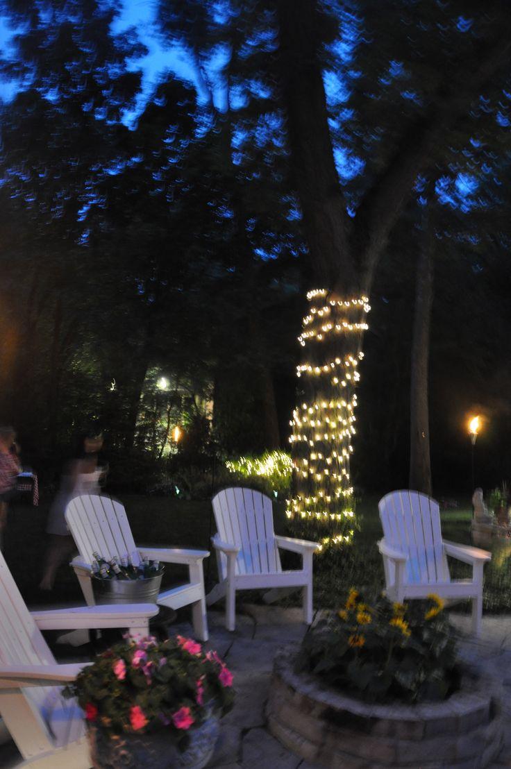 Backyard Light Idea Wrap Any Color Of Christmas String