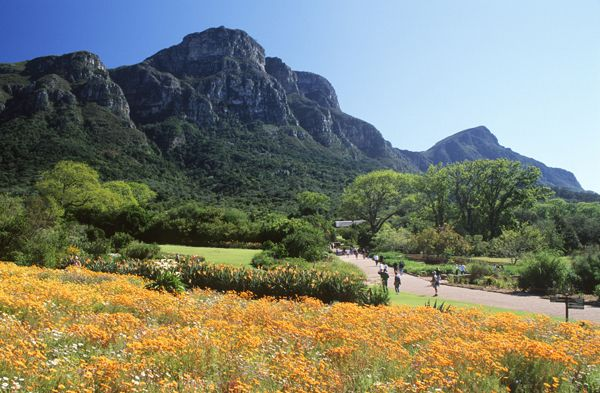 National Botanical Garden  http://www.ihcapetown.com/index.php/en/features-3/sample-content/photos/cape-town