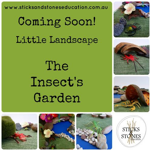 Little Landscape The Insect's Garden