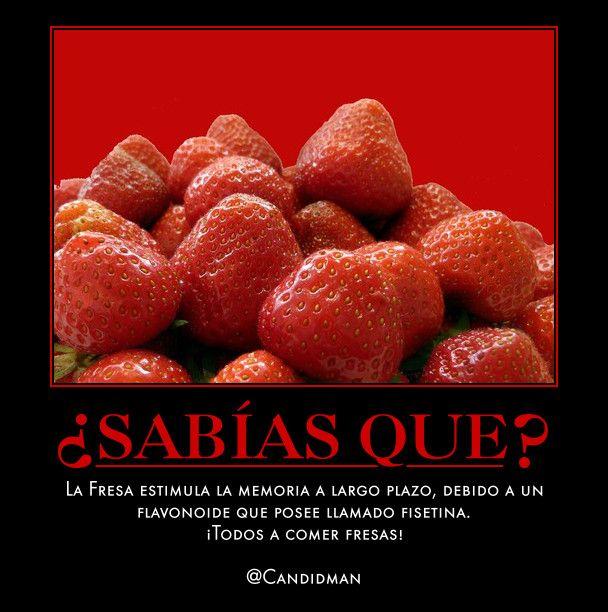 SabiasQue La Fresa estimula la Memoria a largo plazo, debido a un Flavonoide que posee llamado Fisetina. ¡Todos a comer Fresas!