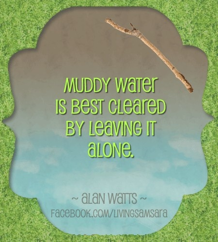 Alan Watts on muddy water. (Of course, if you have a stick and you LIKE mud...) :)