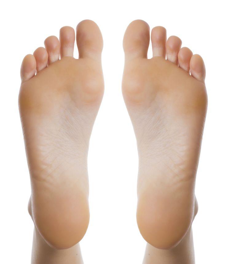 137 best Anatomy Ref: Legs and feet images on Pinterest | Anatomy ...