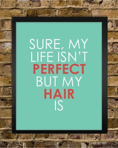 """Perfect Hair  """"Sure my life isn't perfect, but my hair is"""""""