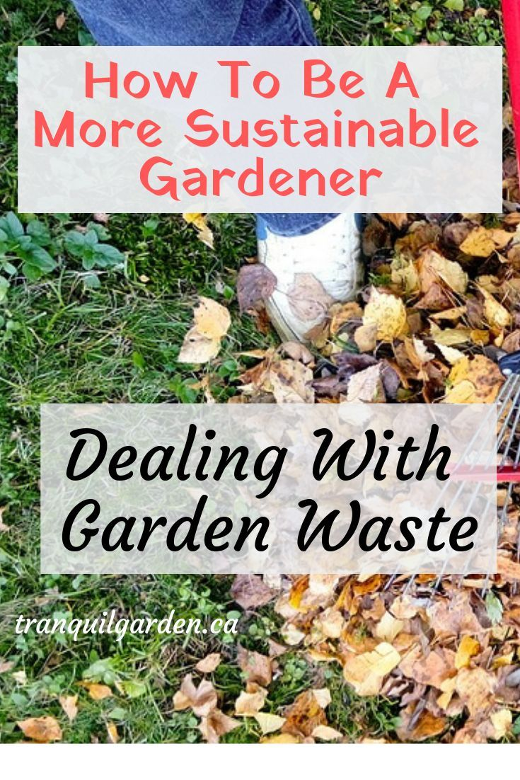 How To Be A More Sustainable Gardener Dealing With Garden Waste