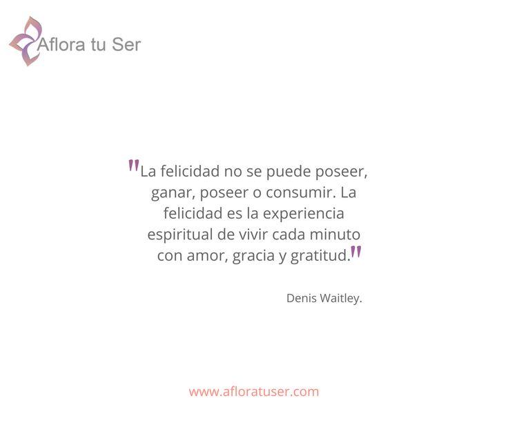 Frases - La felicidad no se puede poseer, ganar, poseer o consumir.