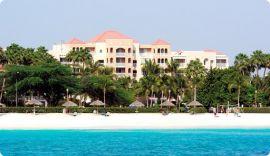 Diepzeevissen | Aruba | Vakantie Arena