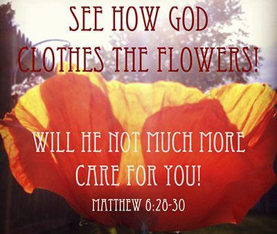 Propsperity God's Way