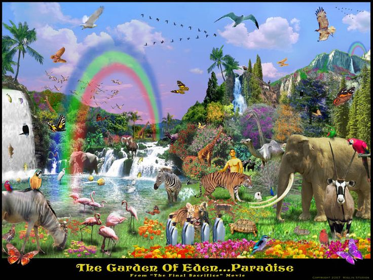 I M Moving To The Garden Of Eden Can Someone Tell Me The Way Gardens Art Pictures And The East