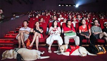 Кинотеатры Китая собрали рекордные кассовые сборы | Head News