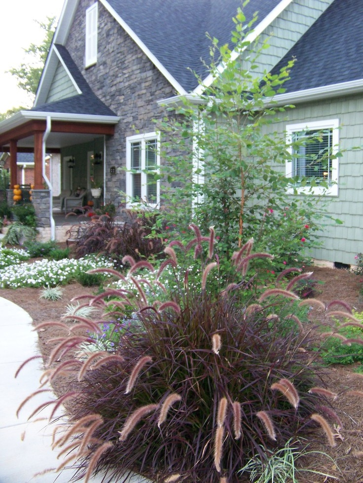 Ideas on pinterest for Ornamental grass landscape ideas