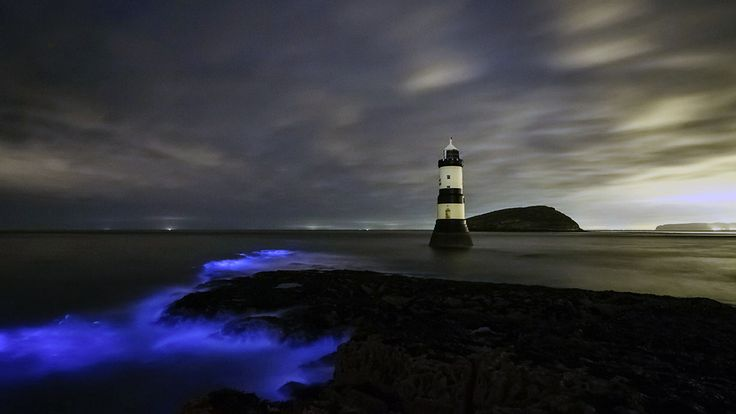 Bioluminescent plankton at Trwyn Du Lighthouse on Anglesey in Wales (© REX/Shutterstock) – 2018-01-27 [http://www.bing.com/search?q=Trwyn+Du+Lighthouse&form=hpcapt&filters=HpDate:%2220180127_0800%22]