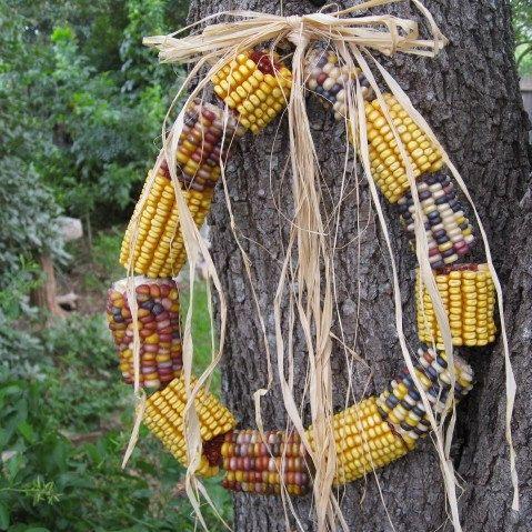 Indian Corn Wreath, Door Wreath, Outdoor Wreaths, Backyard Squirrel Corn Wreath, Backyard Decoration, Garden Decor