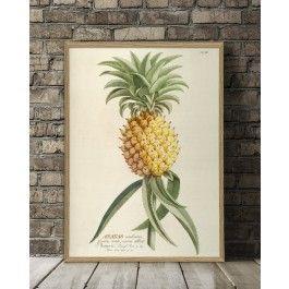 The Dybdahl Co. Ananas plakat no 3700