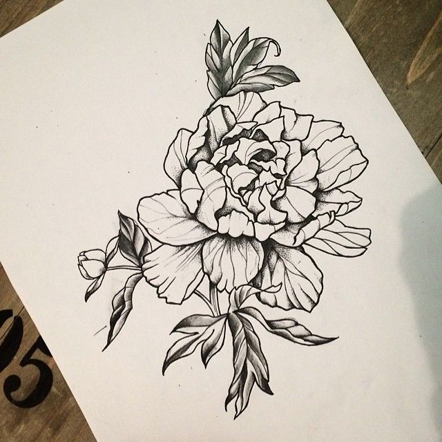 Line Drawing Flower Tattoo : I want to tattoo this peonyflower for any info please