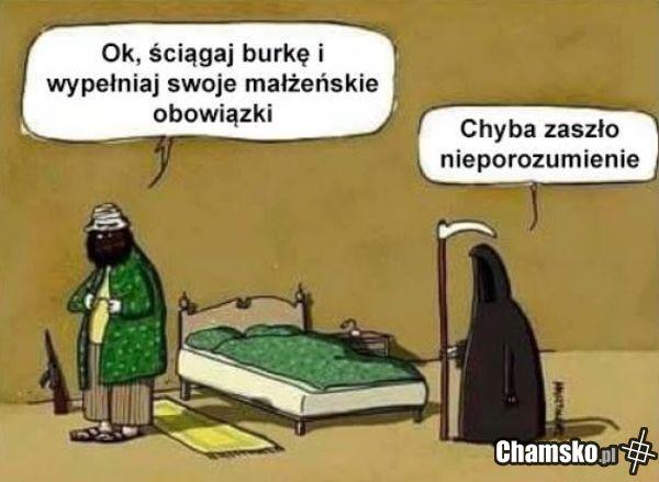 Nieporozumienie - chamsko.pl