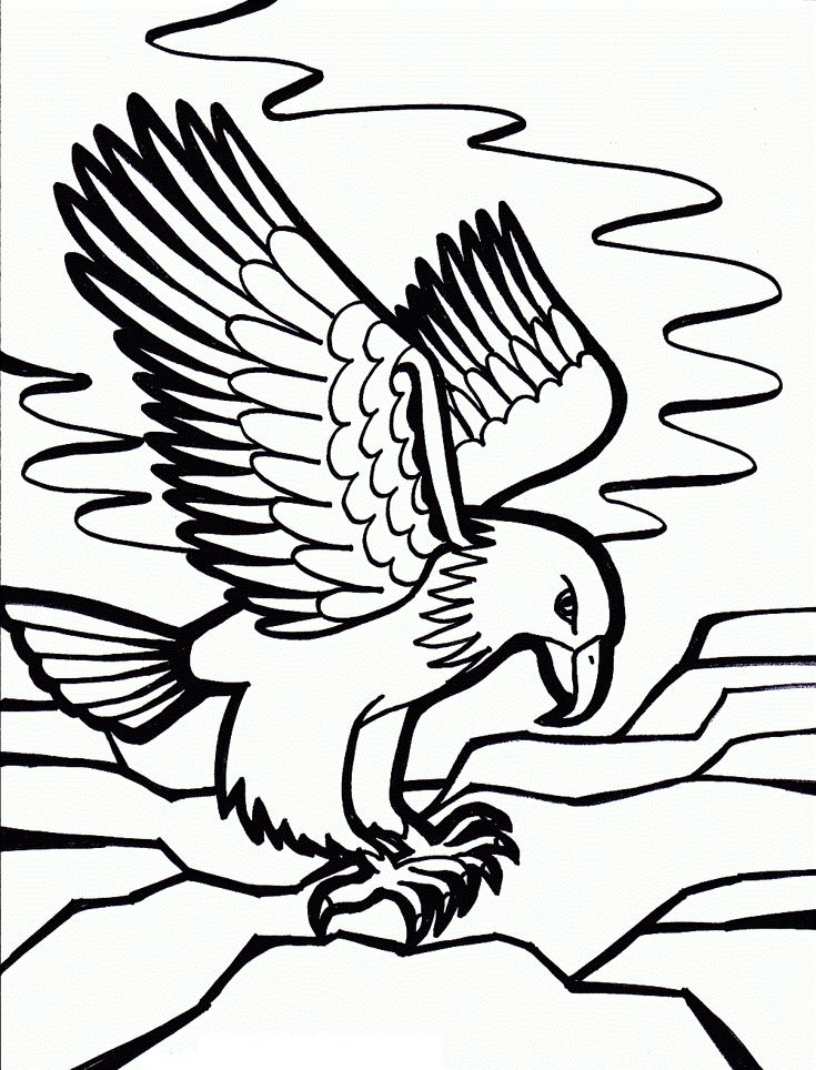 free printable eagle image for shirt | Free Printable Bald Eagle Coloring Pages For Kids